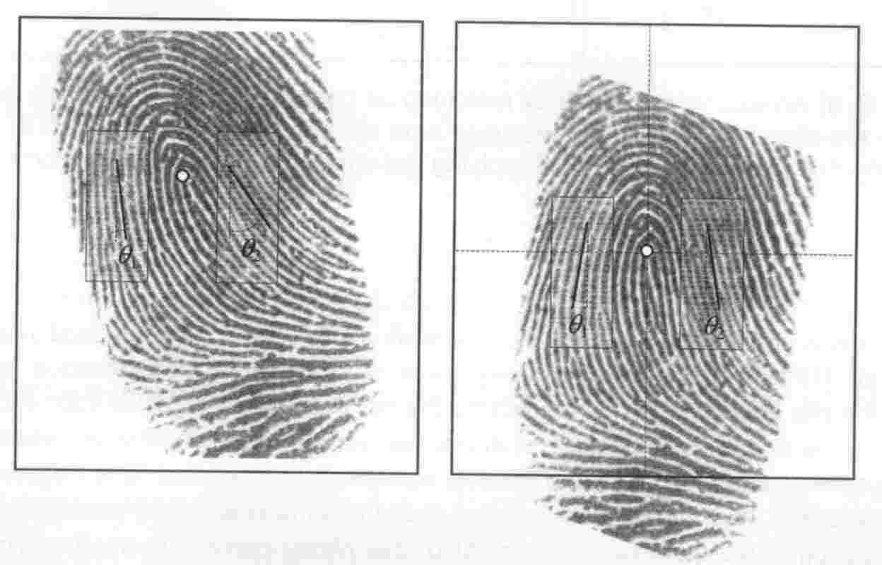 Faszinierend Bild Fingerabdruck Das Beste Von Dabei Wird Der Rotiert, So Dass Die